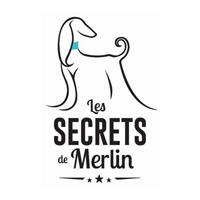 Les secrets de Merlin